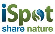 ispot-logo-a3